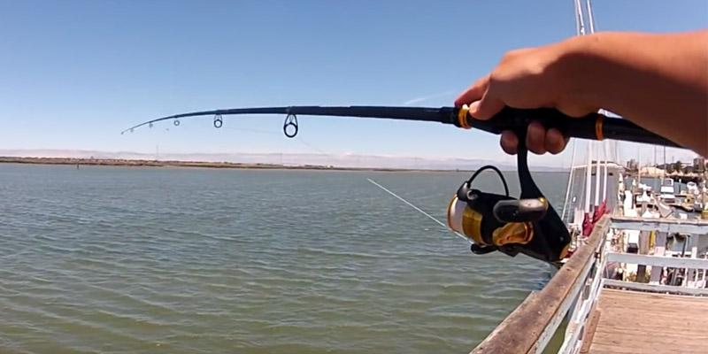 5 Best Fishing Rods Reviews of 2020 in the UK BestAdvisers