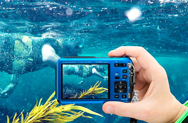 Best Waterproof Cameras for Underwater Shooting