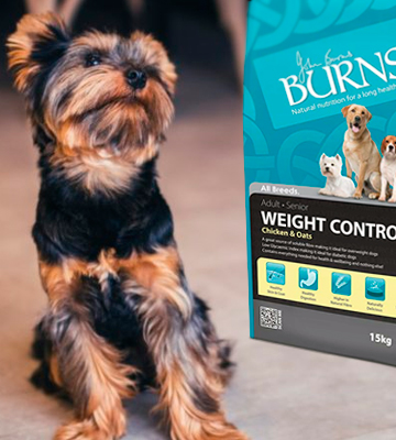 Review of Burns Pet Weight Control Dog Food for Overweight or Diabetic Adult Dogs