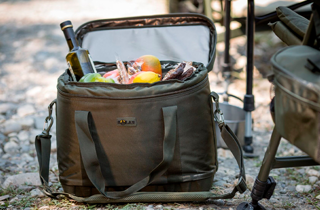 Best Insulated Food Carriers