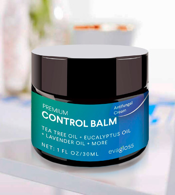 Review of Evagloss Control Balm for Face and Body