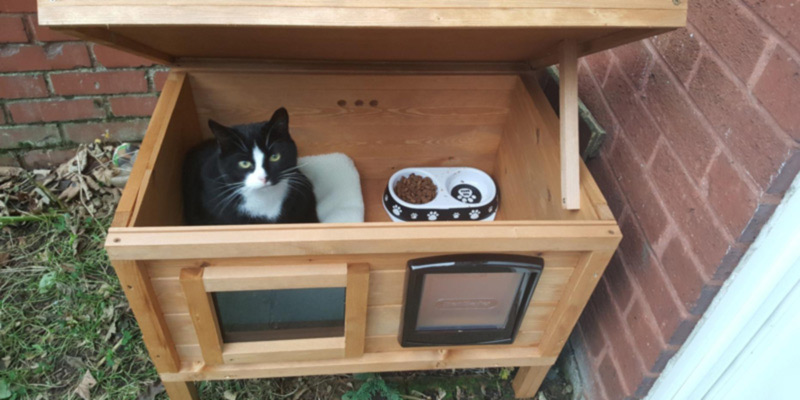 Review of The Hutch Company CATKEN1 Outdoor Cat House