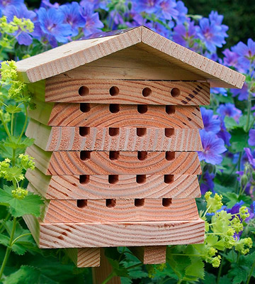 Review of Wildlife World SBH1 Solitary Bee Hive