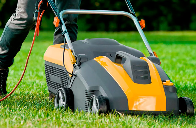 Best Electric Lawn Scarifiers