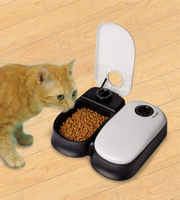 Review of TRIXIE Pet Products Tx2 Automatic Food Dispenser