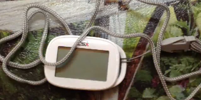 Review of CSX P301S Pedometer