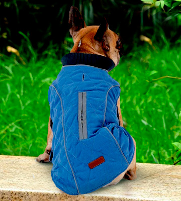 Review of Withu soft Inner Layer Cold Winter Dog Coat