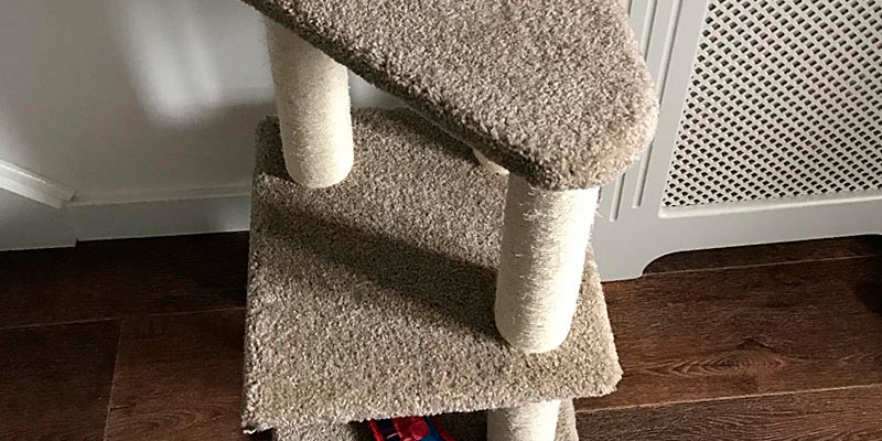 Review of AmazonBasics CT-120-MODEL Cat Activity Tree with Scratching Posts