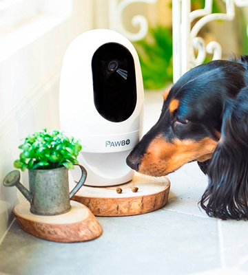 Review of Pawbo PPC-21CL Wi-Fi Pet Camera and Treat Dispenser