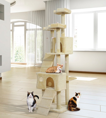 Review of Cozy Pet CT04 Deluxe Multi Level Cat Tree