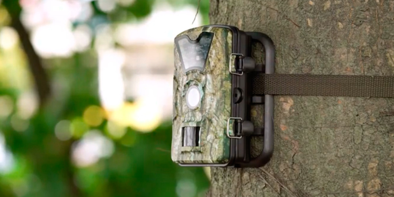 Review of VicTsing GEOD116AB-0531 HD Infrared Game&Trail Camera with 24 Black LEDs 8MP 720P