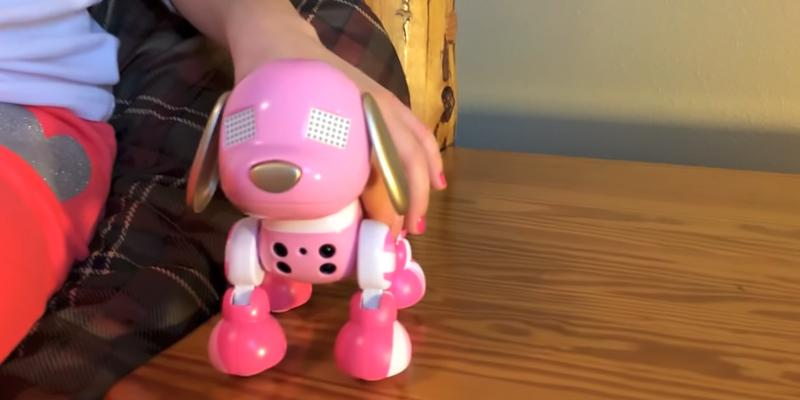 Review of Zoomer Zuppy Love Glam Puppy Toy