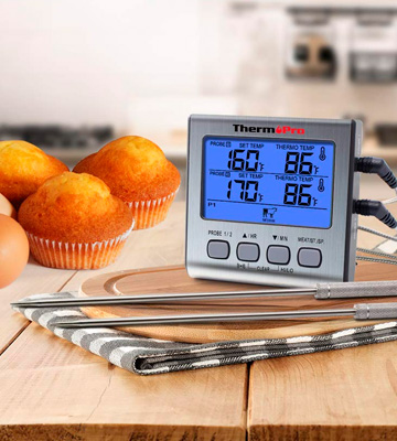 Review of ThermoPro TP17 Dual Probe Digital Cooking Meat Thermometer