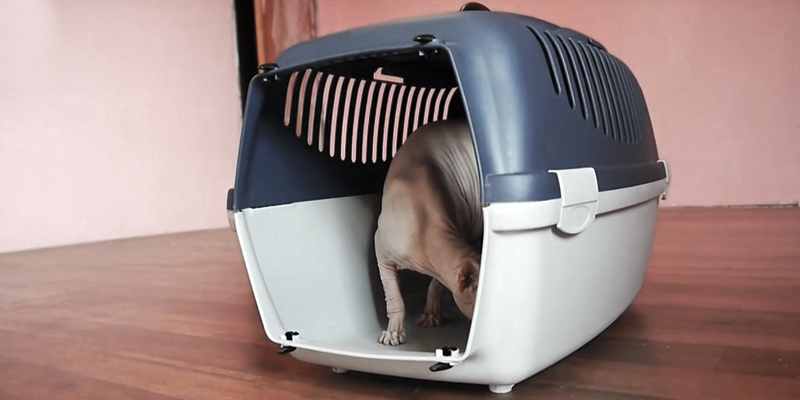 Review of TRIXIE 39811 Traveller Capri I Pet Carrier