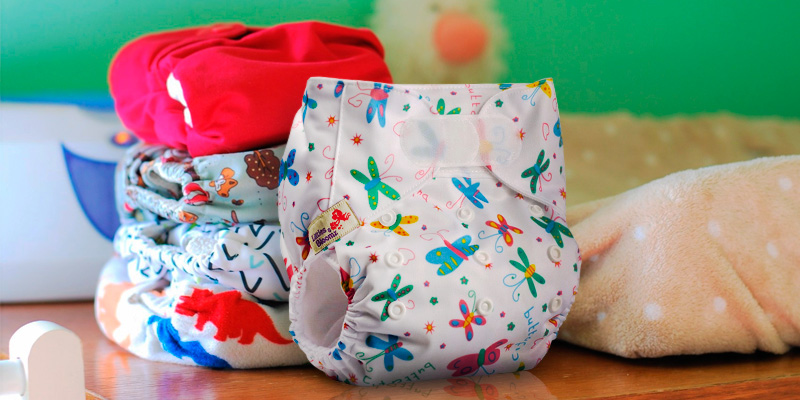 Review of Littles & Bloomz Hook-Loop Reusable Pocket Cloth Nappy