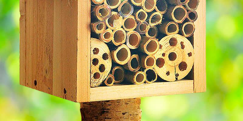 Review of Plant Theatre PTDE/BEE/HOTEL Bee Hotel with Metal Roof
