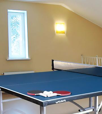 Review of Butterfly Easifold Indoor Table Tennis Table