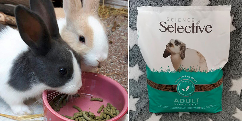 Review of Supreme 10kg Petfoods Science Selective Adult Rabbit