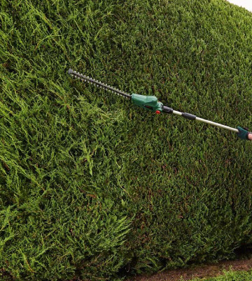 Review of Bosch UniversalHedgePole 18 Cordless Telescopic Hedge Trimmer