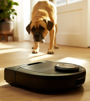 5 Best Robotic Vacuums Reviews Of 2019 In The Uk