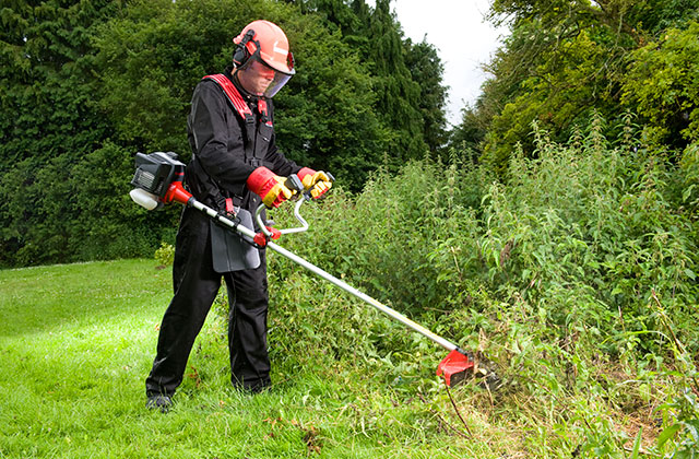 Best Brush Cutters to Get Rid of Dense Plant Growth