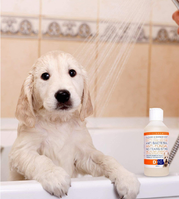Review of D-10 Anti-Fungal/Anti-Bacterial Dog Shampoo