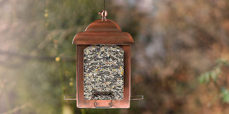 Review of Perky-Pet Lantern Wild Bird Feeder Anti Squirrel Bird Feeder