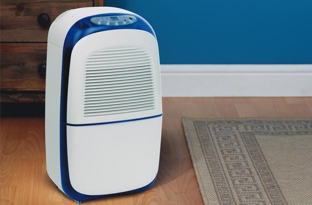 Best Dehumidifiers for Your Breathing Comfort