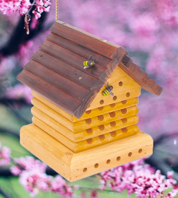 Review of Tom Chambers Bee Hive Wooden