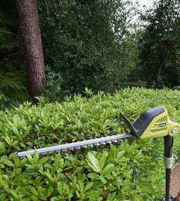 Review of Ryobi ONE+ 18V RPT184520 Cordless Pole Hedge Trimmer
