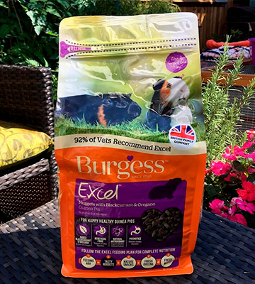 Review of Excel Blackcurrant and Oregano, 2 kg Burgess Guinea Pig Nuggets