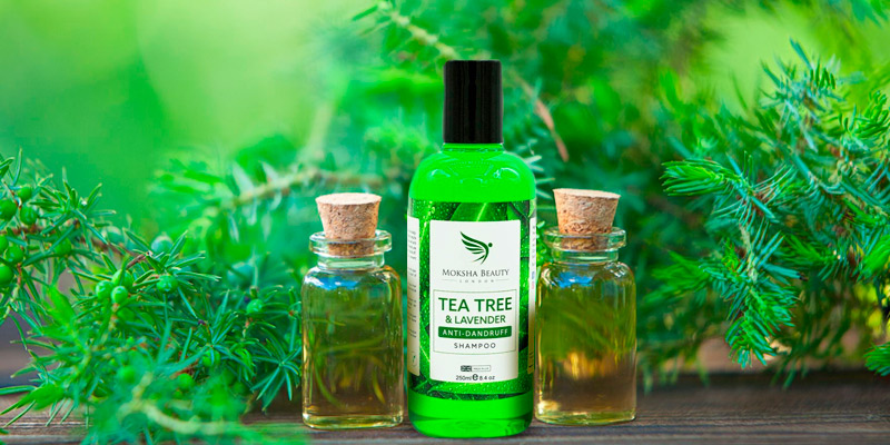 Review of Moksha Beauty Tea Tree for Dry Itchy Flaky Scalp