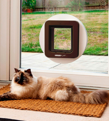 Review of SureFlap 5060180390297 Microchip Pet Door