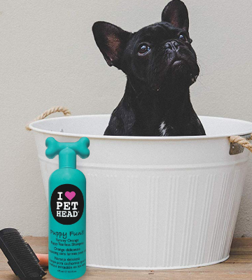 Review of Pet Head Puppy Fun!! Hypoallergenic Tearless Shampoo