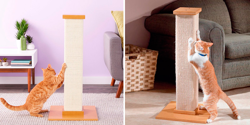 Review of Smart Cat The Ultimate Scratching Post