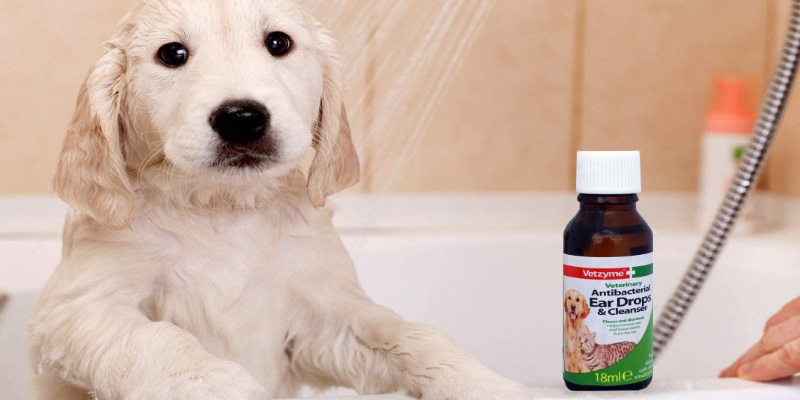 Review of Vetzyme Antibacterial Ear Drops and Cleanser