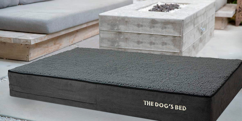 Review of The Dog's Balls Orthopaedic Extra Large Indestructible Dog Bed
