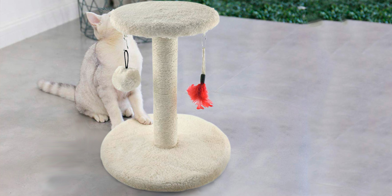 Review of Zubita Kitty Furniture Scratching Post Cat Tree Tower,