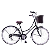 Professional Bordeaux 700c Wheel Womens Hybrid City Trekking Bike