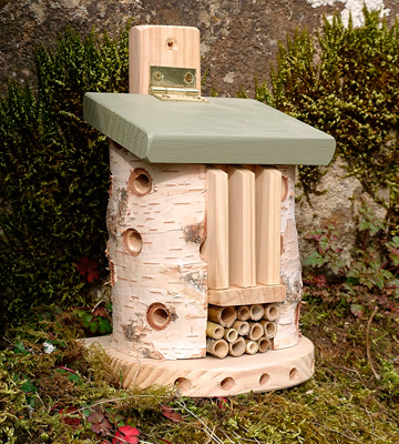 Review of Wildlife World LBT3 Friendly Bug Barn for Butterfly and Other Insects