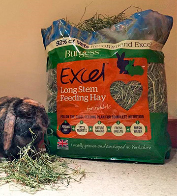 Review of Excel Dandelion and Marigold 1kg Burgess Feeding Hay