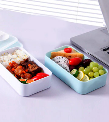 Review of PuTwo Lunch Box 2 Tiers Bento Box BPA Free