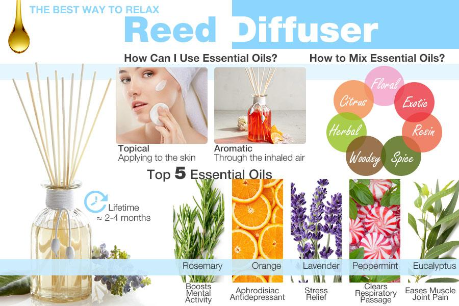 Comparison of Oil Reed Diffusers to Add Aroma to Your Living Space