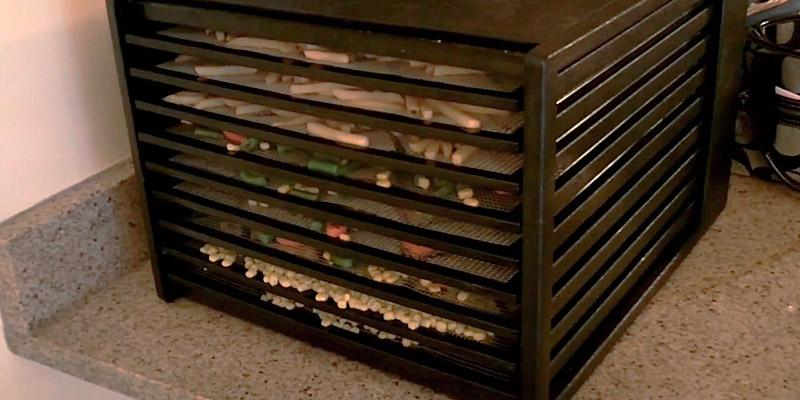 Review of Excalibur 9 Tray Food Dehydrator,