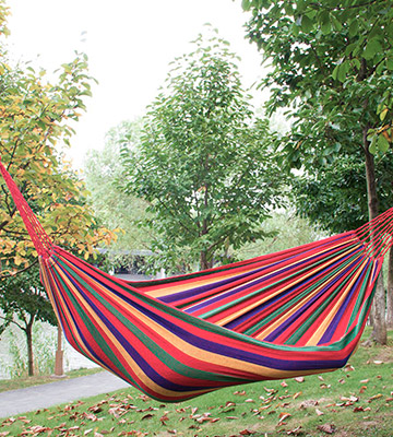 Review of Signswise UK-0204-01 Portable Garden Beach Travel Canvas Hammock
