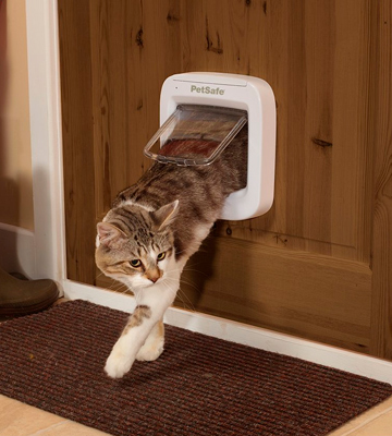 Review of PetSafe PPA19-16687 Microchip Cat Flap