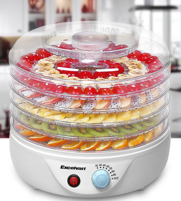 Review of Excelvan UABO26PV-FSUK-01 Food Dehydrator Fruit Dryer Machine