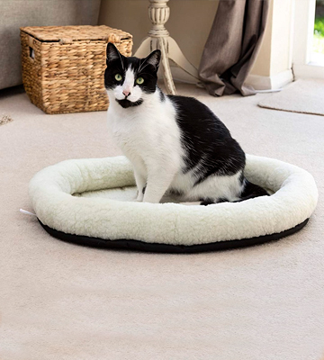 Review of Mikki Kitten Snoozer Pet Bed