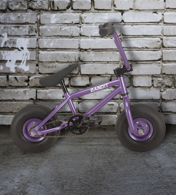 Review of RayGar 2017 Bandit Purple Mini BMX Bike
