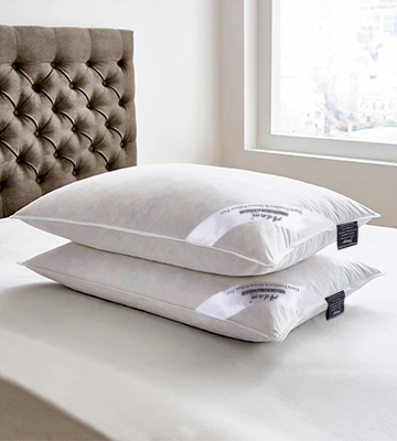 Review of Adam Home Pack of 2, Standard Size Duck Feather and Down Pillows